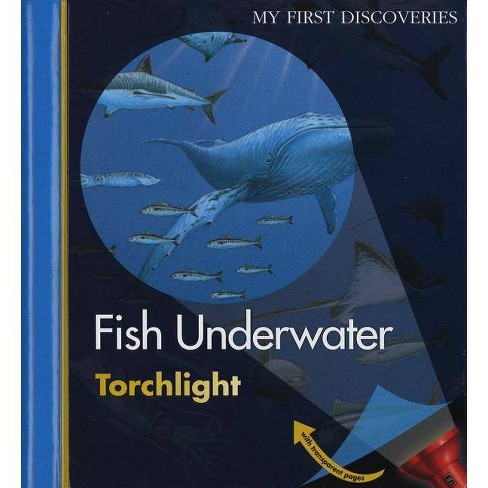 Fish Underwater - (My First Discoveries Torchlight) by  Pierre De Hugo (Spiral_bound) - image 1 of 1
