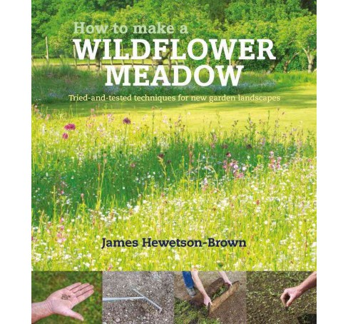 How to Make a Wildflower Meadow : Tried-and-tested Techniques for New Garden Landscapes (Hardcover) - image 1 of 1