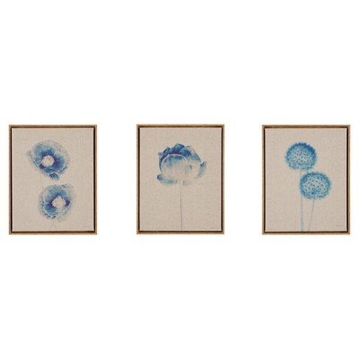 Botanicals Framed 3pc Printed Canvas On Linen - Blue