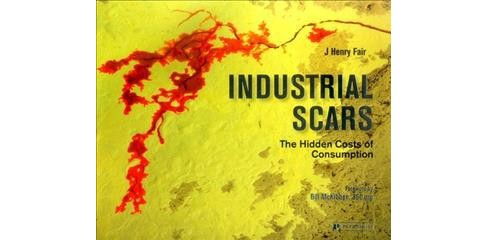 Industrial Scars : The Hidden Costs of Consumption (Hardcover) (Lewis  Smith) - image 1 of 1