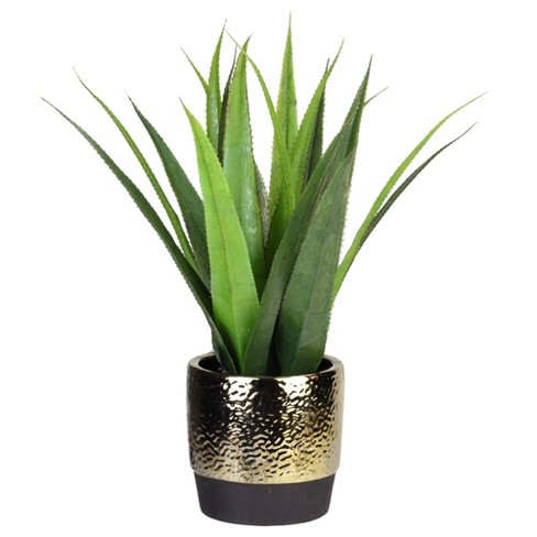 Northlight 17 Agave Succulent Artificial Potted Plant Green Gold Target