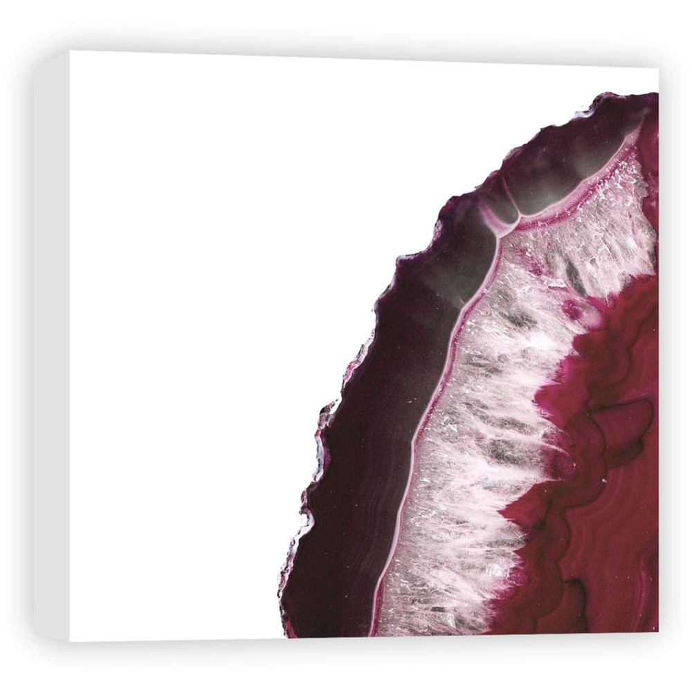 16 34 X 16 34 Pink Trunk I Decorative Wall Art Ptm Images