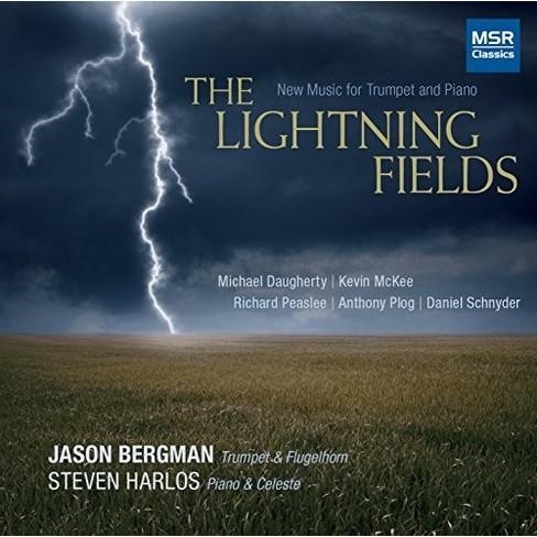 Jason Bergman - Lightning Fields (CD) - image 1 of 1