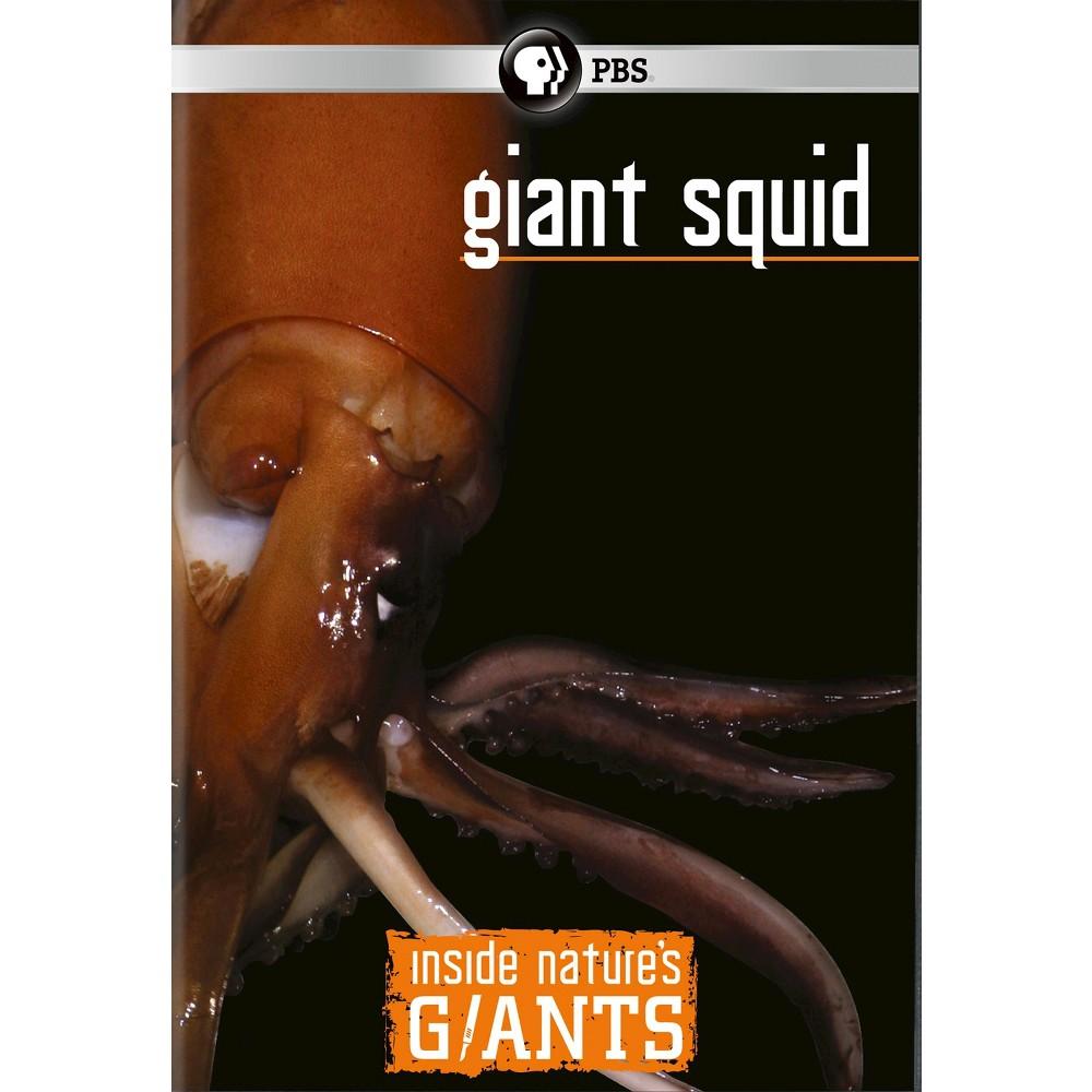 Inside Nature's Giants:Giant Squid (Dvd)
