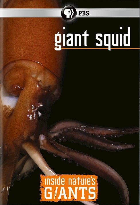 Inside Nature's Giants:Giant Squid (DVD) - image 1 of 1
