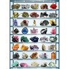 Eurographics Inc. Minerals of the World 1000 Piece Jigsaw Puzzle - image 2 of 4