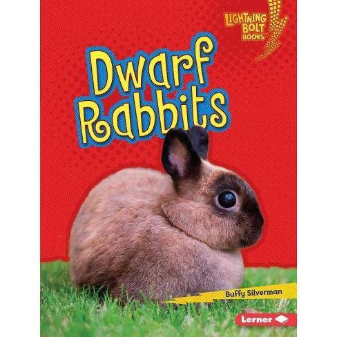 Dwarf Rabbits - (Lightning Bolt Books (R) -- Little Pets) by  Buffy Silverman (Hardcover) - image 1 of 1