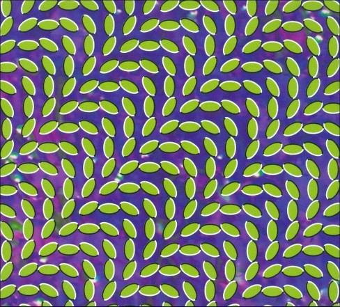 Animal collective - Merriweather post pavilion (CD) - image 1 of 10