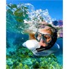 Snorkeling Comb, One Size Fits Most,Adult Large(10-13)Snorkel & Diving Fins - image 3 of 4