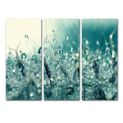 "36.5""x48"" Beata Czyzowska Young 'Under the Sea' 3 Panel Decorative Wall Art set - Trademark Fine Art"