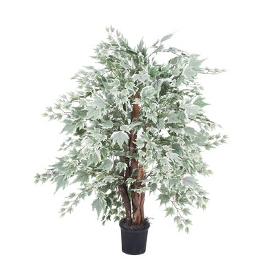 Extra Full Silver Maple Bush in Black Plastic Pot (4ft) - Vickerman
