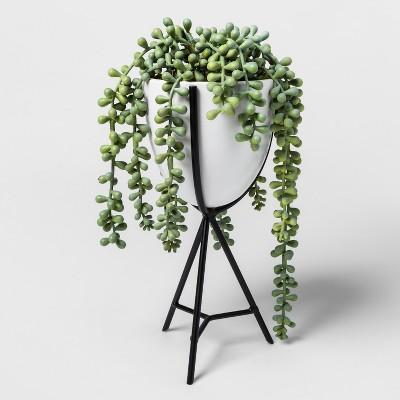 Faux Succulent Plant in White Pot - Project 62™