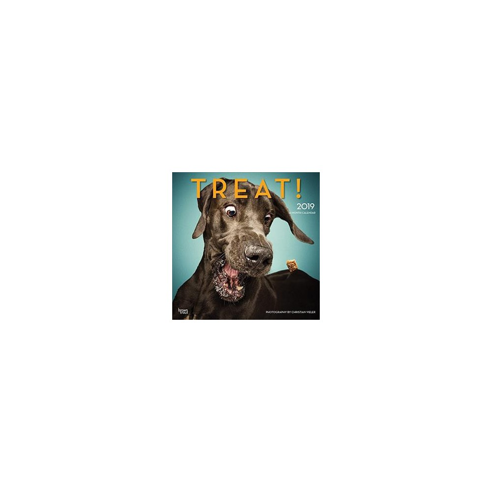 Treat! 2019 Calendar - (Paperback)