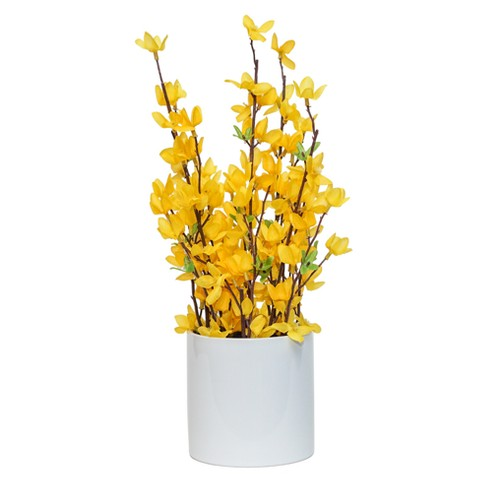 "Artificial Forsythia Arrangement in Ceramic Pot Yellow 16"" - Lloyd & Hannah - image 1 of 1"