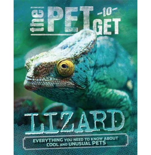 Lizard -  (Pet to Get) by Rob Colson (Paperback) - image 1 of 1