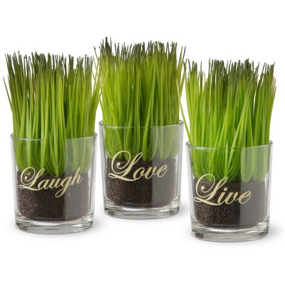 3pc Sprout-Filled Glass Artificial Assortment - National Tree Company