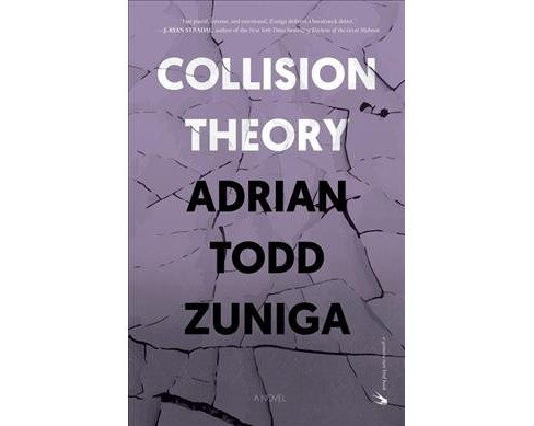 Collision Theory -  by Adrian Todd Zuniga (Paperback) - image 1 of 1
