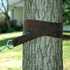 Outdoor Patio Heavy-Duty Hammock Hanging Tree Straps/S-Hooks - image 3 of 3