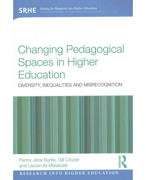 Changing Pedagogical Spaces in Higher Education : Diversity, Inequalities and Misrecognition (Paperback) - image 1 of 1
