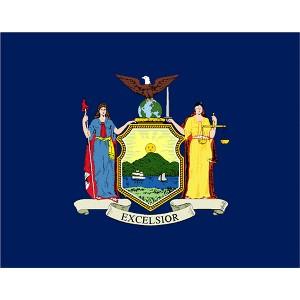Halloween New York State Flag - 4