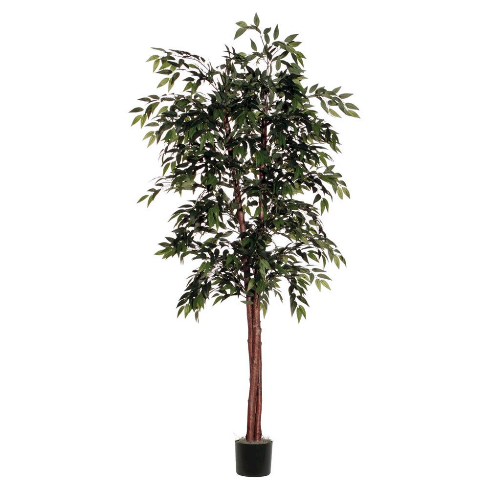 Image of Smilax Deluxe Tree in Black Plastic Pot with American made Excelsior - Green (72)
