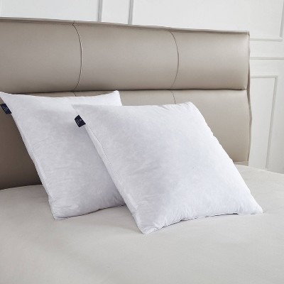 Euro 2pk Firm Feather Down Bed Pillow - Scott Living