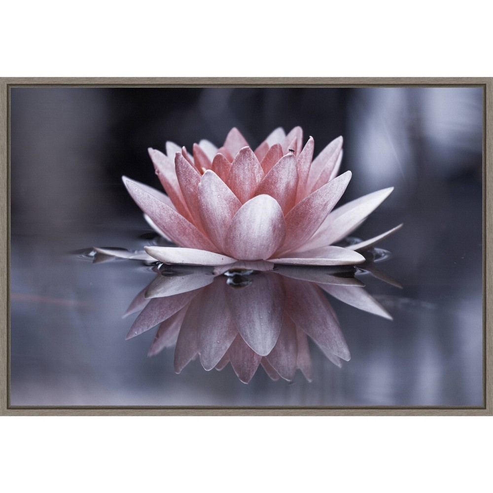 23 34 X 16 34 Padmasana Lotus Flower By Fabien Bravin Framed Canvas Wall Art Amanti Art