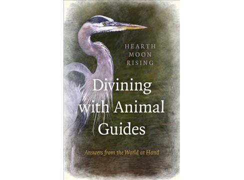 Divining With Animal Guides : Answers from the World at Hand - Reprint by Hearth Moon Rising (Paperback) - image 1 of 1