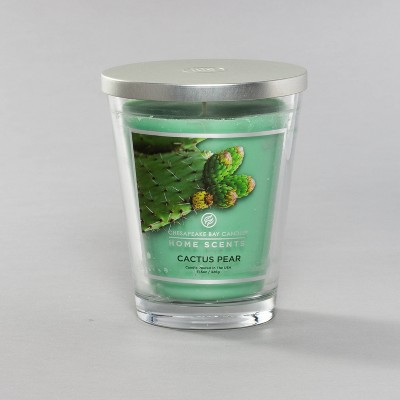 Jar Cactus Pear Candle - Home Scents by Chesapeake Bay Candle