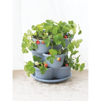 Stacking Self-Watering Strawberry Pot - Gardener's Supply Company