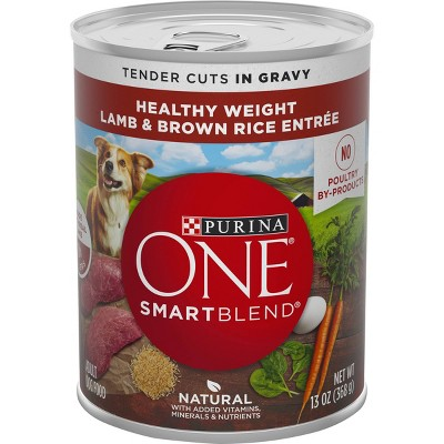 Purina ONE Tender Cuts in Gravy Wet Dog Food - 13oz