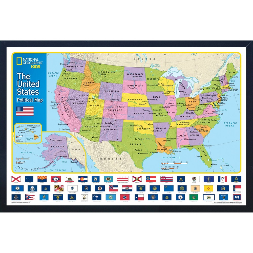 Image of National Geographic Educational Art - USA Map with Flags