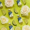 Grove Co. Multi-Purpose Cleaner Concentrates - Citron & White Rose - 2pk - image 3 of 4