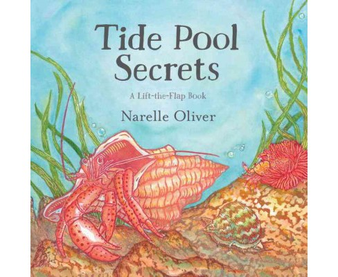Tide Pool Secrets -  by Narelle Oliver (School And Library) - image 1 of 1