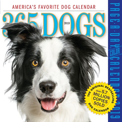 "2019 ""365 Dogs Page-A-Day"" Calendar - image 1 of 1"
