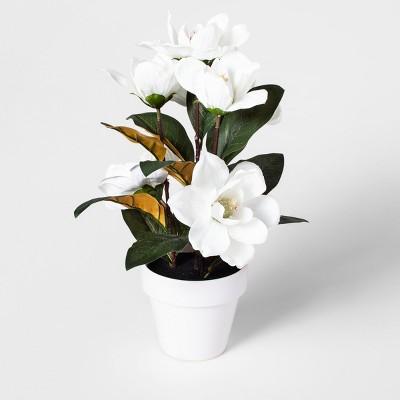 17.5  x 13  Artificial Magnolia Arrangement In Pot Green/White - Threshold™