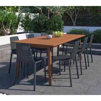 Elvis 9pc Rectangular Wood/Resin Patio Dining Set - Gray - Amazonia