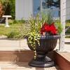 "2pk 18"" Grecian Urn Planter Black - Bloem - image 2 of 3"
