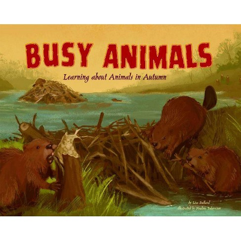 Busy Animals - (Autumn (Library)) by  Lisa Marie Bullard (Hardcover) - image 1 of 1