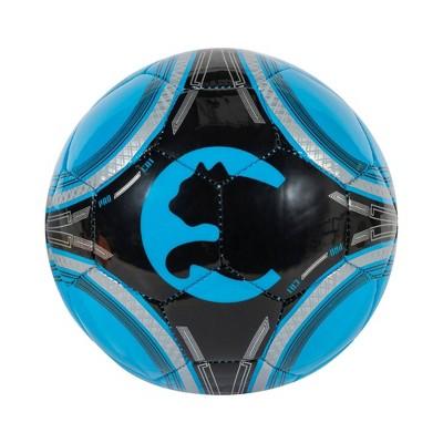 ProCat Size 1 Mini Ball