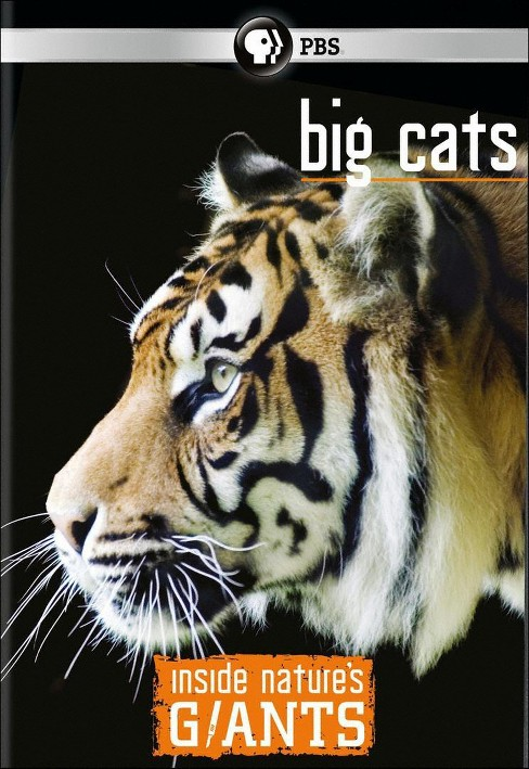 Inside nature's giants:Big cats (DVD) - image 1 of 1