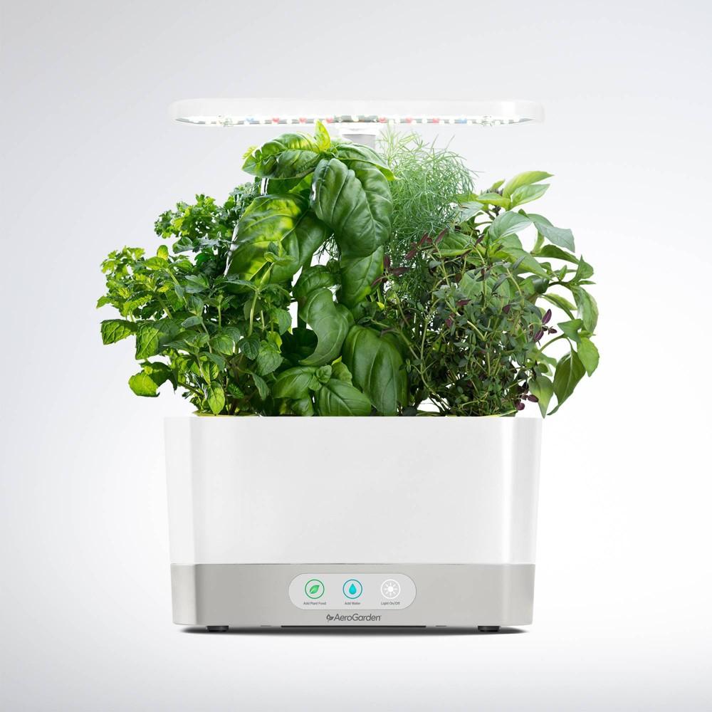 Image of Harvest Planter White - AeroGarden