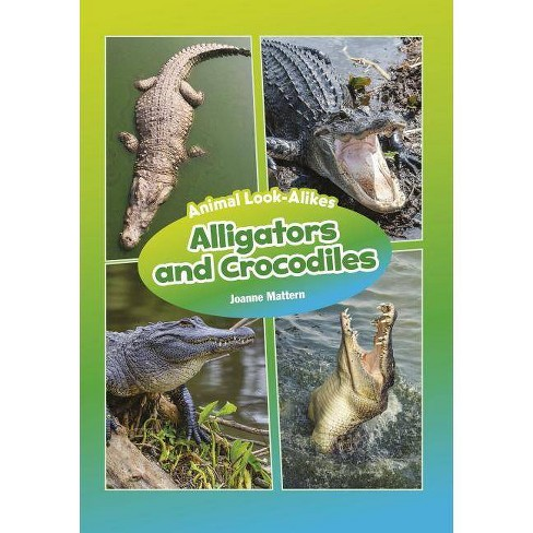 Alligators and Crocodiles - (Core Content Science -- Animal Look-Alikes) by  Joanne Mattern (Hardcover) - image 1 of 1