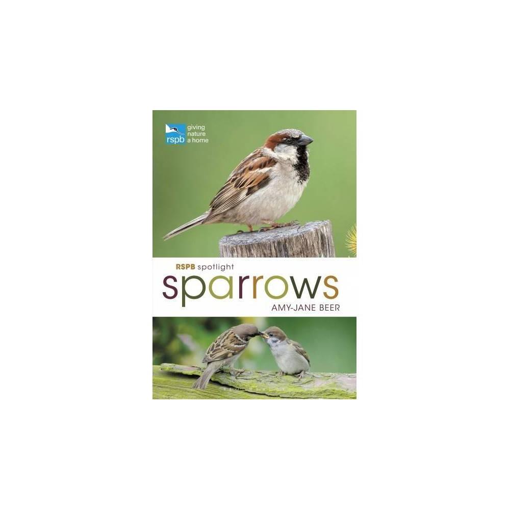 Rspb Spotlight Sparrows - (Rspb) by Amy-Jane Beer (Paperback)