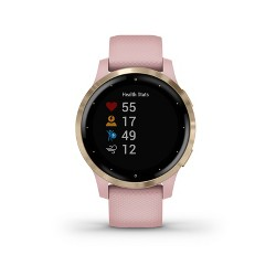 Garmin vivoactive 4S Dust Rose with Light Gold Hardware