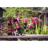 Francis Coppola Diamond Zinfandel Red Wine - 750ml Bottle - image 4 of 4