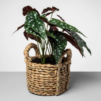 """17"""" x 15.5"""" Artificial Dotted Begonia Plant in Basket Green/Natural - Opalhouse™"""