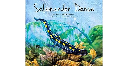 Salamander Dance (Hardcover) (David Fitzsimmons) - image 1 of 1