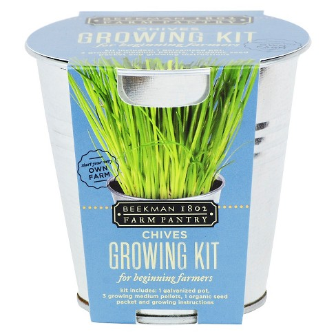 Beekman 1802 Farm Pantry Chives Growing Kit - image 1 of 1
