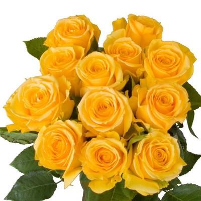 Fresh Cut Yellow Roses - 12ct
